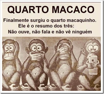 QUARTO_MACACO