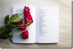 248784-como-escrever-um-livro-de-poesia-em-x-passos-770x513