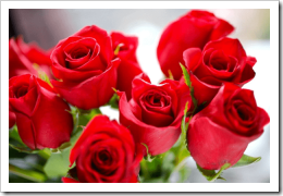 sonhar-com-rosas-vermelhas-1